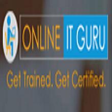 Online IT Guru's Logo