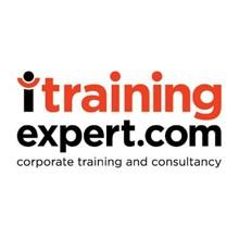 ITRAININGEXPERT.com's Logo