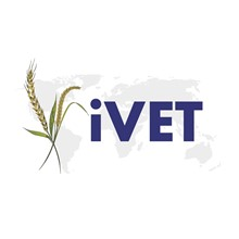 Institute of Vocational Education and Training's Logo