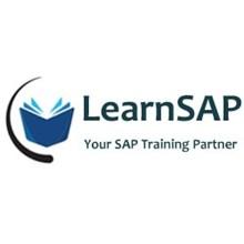 LearnSAP's Logo