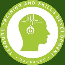 Tekguru Training's Logo