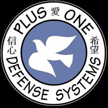 Team Plus One's Logo