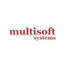 Multisoft Systems's Logo