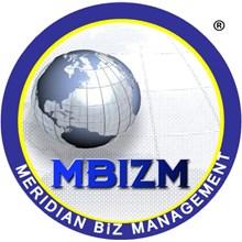 MBizM Group (LeanSix Sigma)'s Logo
