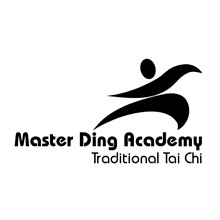 Master Ding Academy Ireland's Logo