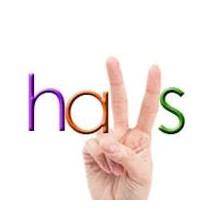 HAVS's Logo