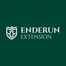 Enderun Extension's Logo