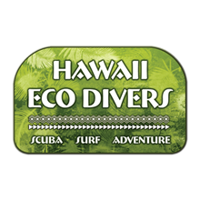 Hawaii Eco Divers & Surf Adventures's Logo