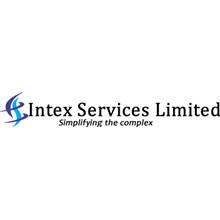 Intex Management Institute's Logo