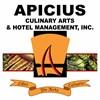 Apicius Culinary Arts's Logo