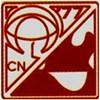 CCNAPI's Logo
