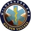 Golden Success WEMS's Logo