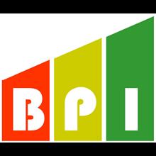 Business Performance Improvement's Logo