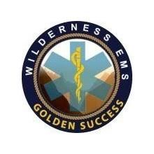 Golden Success WEMS's Logo