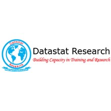 Datastat Research's Logo