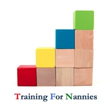 Training for Nannies's Logo
