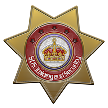 SDS Training and Security's Logo