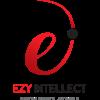 EZY Intellect's Logo