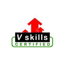 Vskills's Logo