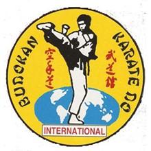 Lion Budokan Karate International's Logo